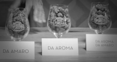 Storie di birra – Classificazione dei luppoli