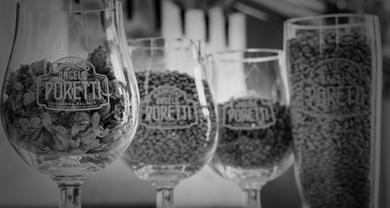 Storie di birra – Gli ingredienti della birra