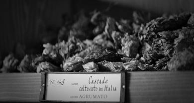 Birrificio Angelo Poretti<br>4 Luppoli