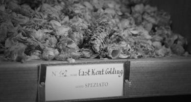 Storie di birra – East Kent Golding